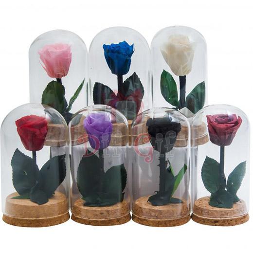 Անթառամ վարդեր — 10սմ